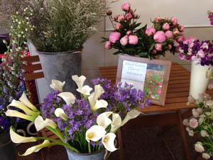 British Grown Flowers Flower Stall Exeter Greenacre Flowers (3) 300