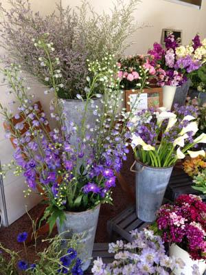 British Grown Flowers Flower Stall Exeter Greenacre Flowers (4) 300