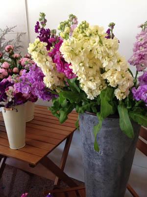 British Grown Flowers Flower Stall Exeter Greenacre Flowers (4a) 300