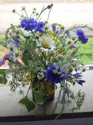 British Grown Flowers Greenacre Flowers wedding Exeter (6a) 300
