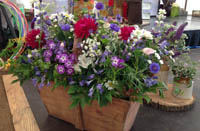 Flowers Exeter Events